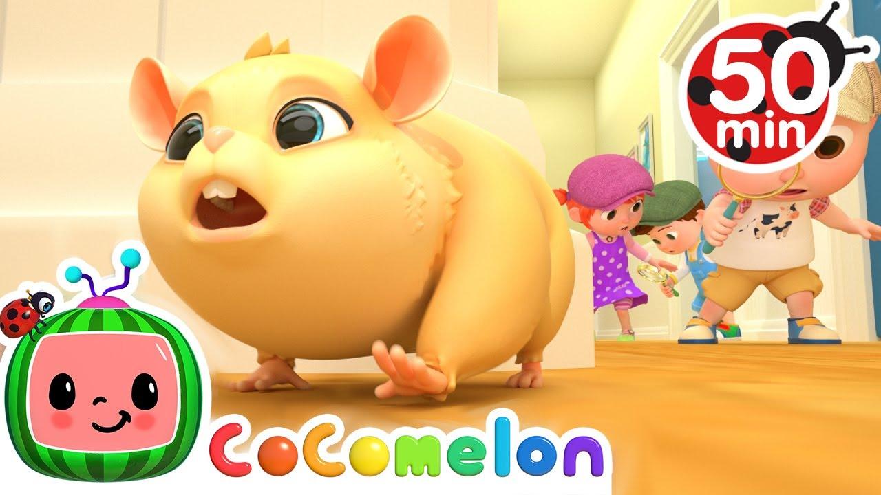 Download Lost Hamster Song + More Nursery Rhymes & Kids Songs - CoComelon