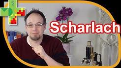Scharlach: Ursachen, Diagnose, Verlauf und Behandlung, Komplikationen, Antibiotika