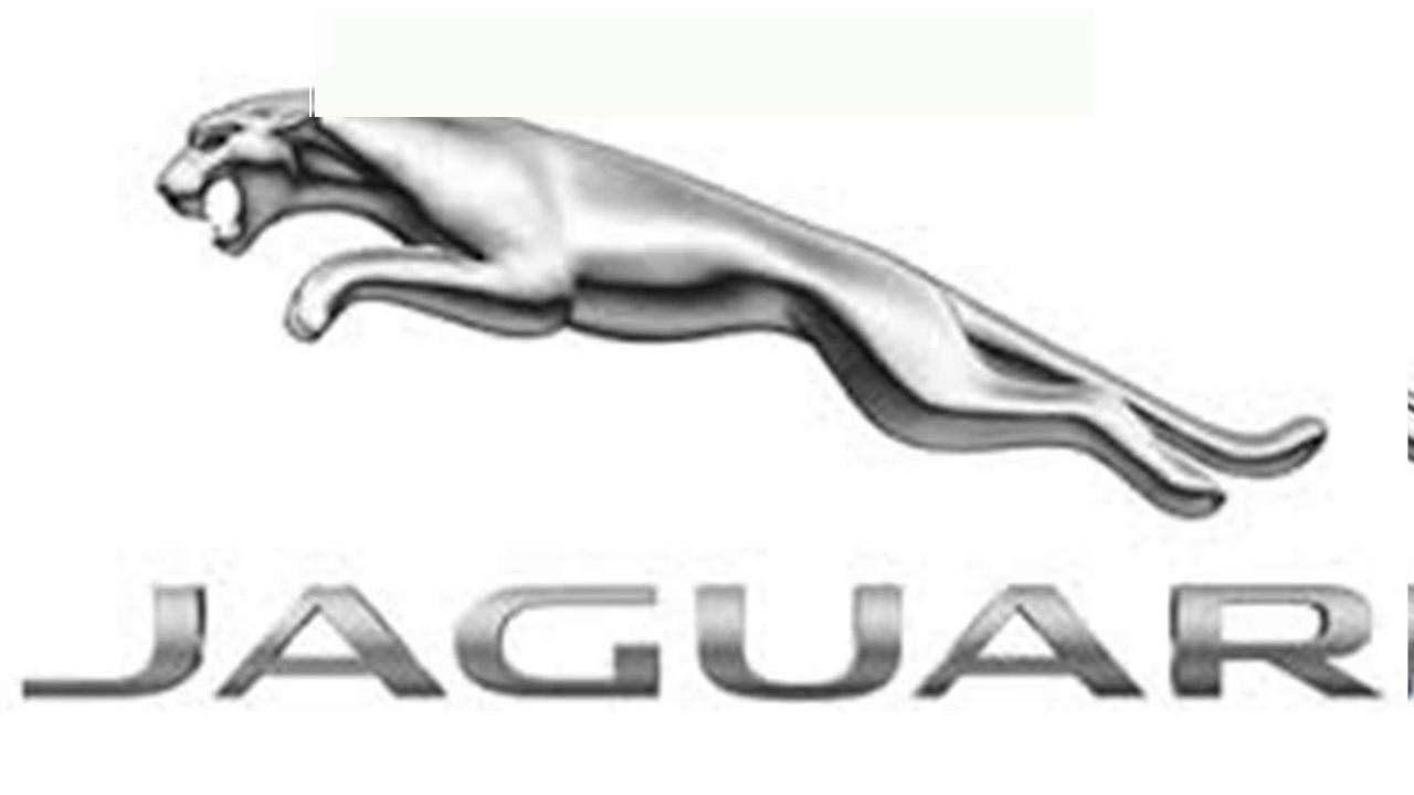 Jaguar logo youtube jaguar logo buycottarizona