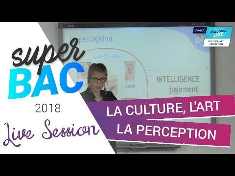 Bac 2018 - Révisions de Philosophie en LIVE : La culture, L'art, La perception