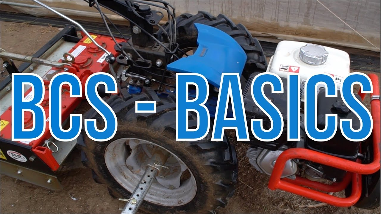 The Basics of the BCS (Recap)