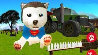 Суперпес на ферме СИМУЛЯТОР СОБАКИ 🐶🐶 веселое РАЗВЛЕКАТЕЛЬНОЕ ВИДЕО для детей #ИГРУЛЯ
