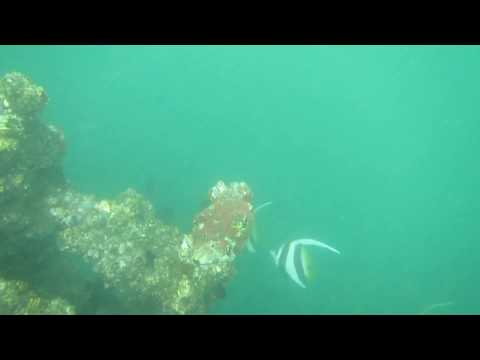 """Under Deep Sea rare video!!!! Steel Structure Fall Down, due to Very Severe Cyclonic Storm """"HUD HUD"""""""