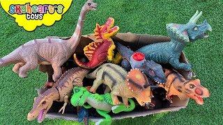 DINOSAURS FIGHT in box! Skyheart T-Rex battle brachiosaurus toys kids learn