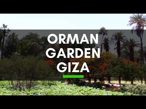 Orman Garden in Giza, Cairo, Egypt - One of the Most Famous Big Botanical Gardens in Cairo, Egypt