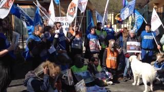 6 marzo 2015 - Flash Mob Animalisti a Villa Borghese