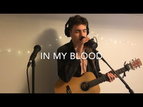 Shawn Mendes - In My Blood (Acoustic Loop Pedal Cover)