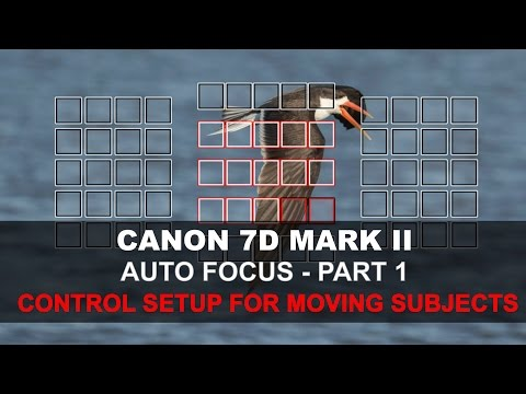 Canon 7D Mark II Auto Focus - Part 1/5: Control Setup for Moving Subjects