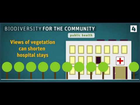 Biodiversity, what's it worth to you?