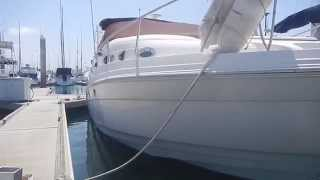 San Diego Hull Cleaning (Dockside Divers) Regal 29' Before and After