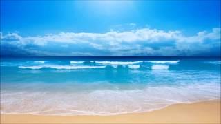 チェキッ娘 - 海へ行こう‐Love Beach Love‐