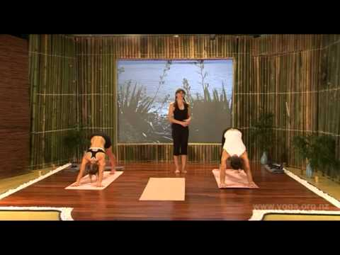 Yoga and the Art of Aging Full DVD Yoga Routine Week 1 full version.