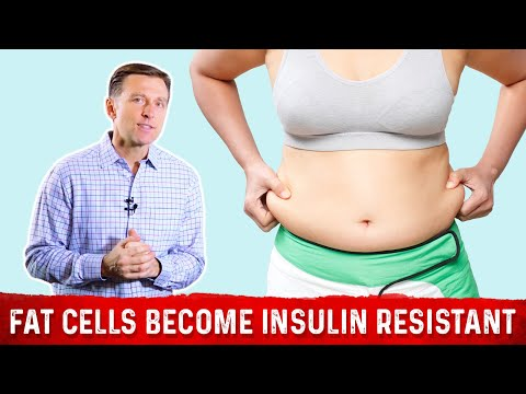 What Happens When Your Fat Cells Become Insulin Resistant