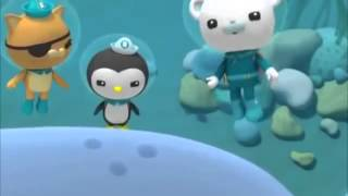 Octonauts and The Cookiecutter Sharks (Season 1 - Episode 31) Full Episode