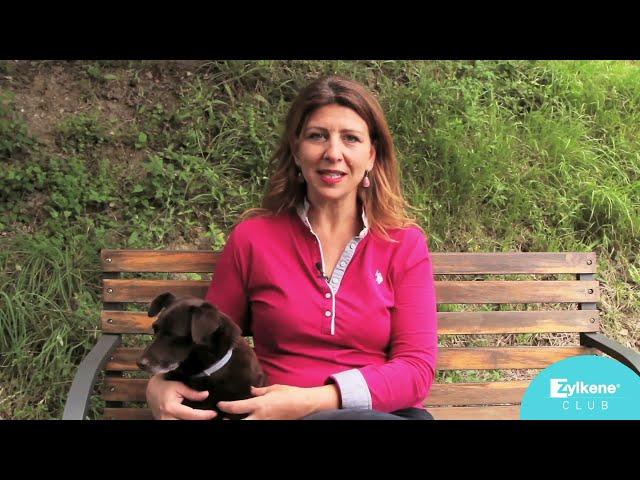 La scelta del cane adatto alla propria famiglia: i bisogni delle diverse razze