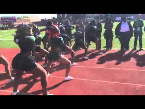 Woodrow Wilson High School Tigers - Green And White - Come Get You Some Cheer