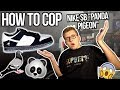 """HOW TO BUY CRAZY LIMITED NIKE SB """"PANDA PIGEON"""" DUNK + RELEASE INFO! 