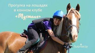 Уроки верховой езды от конного клуба «Мустанг»