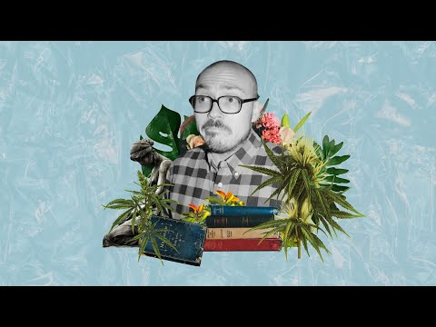 how-anthony-fantano-reviews-music