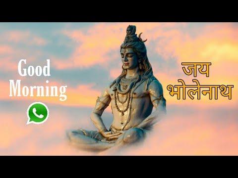 God Shiva Good Morning Status || Good Morning Status Bhakti Song || Shiva Bhajan WhatsApp Status