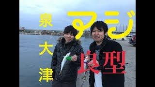 fishingmax 泉大津店 3/19 中マアジ!遂に!中サバも! thumbnail