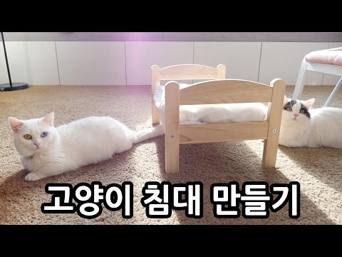 고양이 침대 만들기 + 쵸비 첫 캣닙 반응 Make Cat Bed + Kitty Catnip Reaction