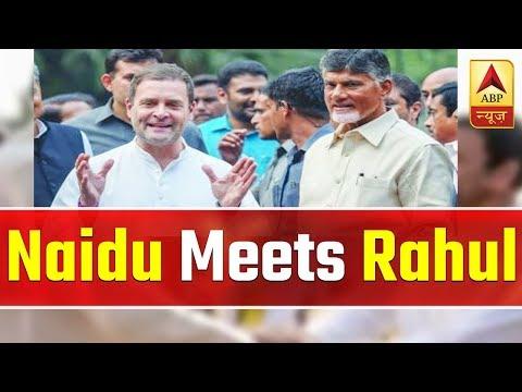 Naidu Meets Rahul, Pawar; To Meet Mayawati, Akhilesh In UP | ABP News