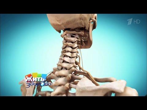 Повелитель боли.  Боль в шее. Жить здорово! (10.12.2015)