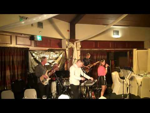 Spitting Feathers Live at Portal Golf Club 23rd May 2015