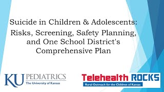 TelehealthROCKS ECHO Keeping Kids Safe series: Session 2