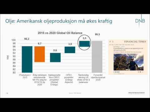Hvordan er utsiktene til selskapene på Oslo Børs i 2017 - DNB Norge