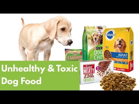 Worst Dog Food 14 Unhealthy Toxic