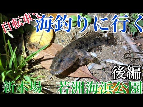 【東京】自転車で海釣りに行く~若洲海浜公園・新木場公園~(後編)