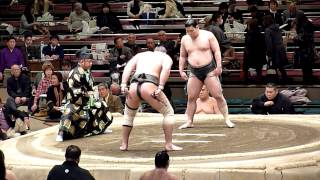 Hatsubasho '14 at Kokugikan in Tokyo Makushita , day 11 (22.01.) wa...