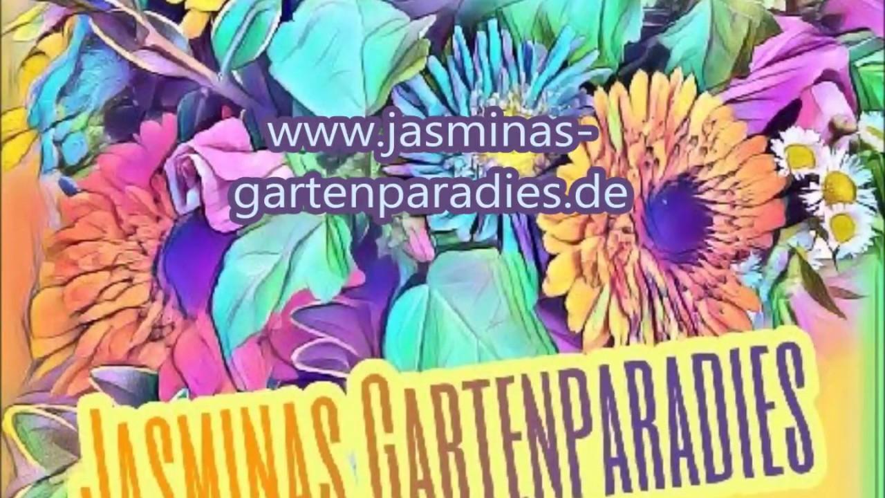 Geräumig Gartenideen 2017 Das Beste Von Garten Ideen Ankündigung &garten Messe