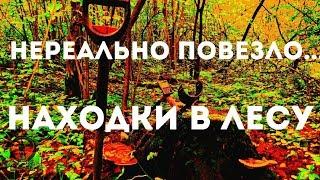 КУЧА ШИКАРНЫХ НАХОДОК В ЛЕСУ.