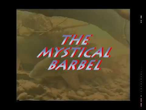 Barbel Fishing River Teme - The Mystical Barbel