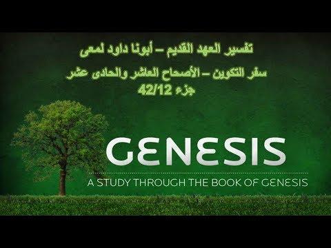 تفسير العهد القديم - أبونا داود لمعى | سفر التكوين - الأصحاح العاشر والحادى عشر - جزء 42/12 thumbnail