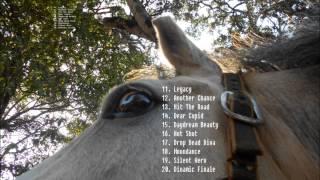 Top 50 Horse Names