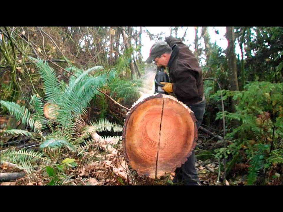 Split Log Bench Wmv Youtube
