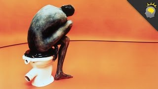 Is there a 'right' way to poop? - Science on the Web #62
