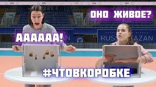 татьяна Новик интервью
