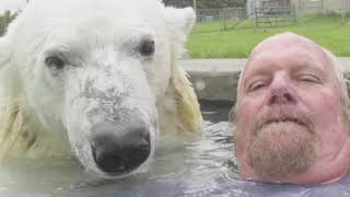 Un uomo adotta un orso polare come fosse un animale domestico