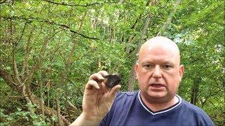 Metal detecting in Westwood Park Wigan, 2nd dig: The dustbin graveyard.