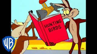 Looney Tunes | Road Runner Hunting | Classic Cartoon | WB Kids