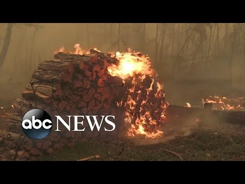 Siberian Wildfires Now Biggest Fire In The World!!