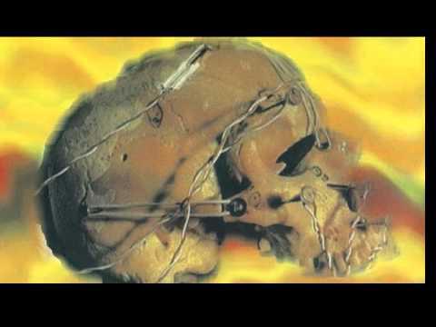 Biopsy - Barrel Of A Gun (Depeche Mode Cover)