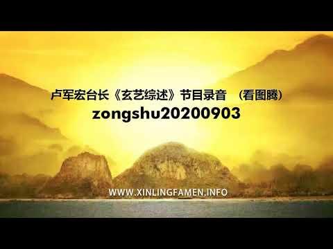 心灵法门-zongshu20200903---卢军宏台长《玄艺综述》节目录音-(看图腾)