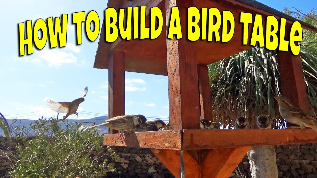 Watch How to Build a Bird Table video