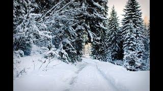 Shogran Siri Paye Jeep Track in Heavy Snowfall - Naran Kaghan Valley